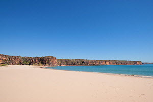 Sandy beach with coastal cliffs in background. Tranquil Bay and Koolama Bay, The Kimberley, Western Australia. 2015.  -  Rick Price