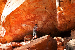 Tourist looking at Wandjina style Aboriginal rock art, depiction of people and fish. Raft Point, Doubtful Bay, The Kimberley, Western Australia. 2016.  -  Rick Price