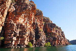 Cliffs on King George River. Koolama Bay, The Kimberley, Western Australia. 2015.  -  Rick Price
