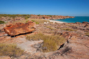 Rocky coastline with view to location of cave with Aboriginal rock art. Wary Bay, Bigge Island, Bonaparte Archipelago, The Kimberley, Western Australia. 2015.  -  Rick Price