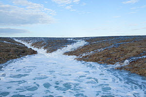 Water starting to run off the reef with ebbing tide. Doubtful Bay, The Kimberley, Western Australia  -  Rick Price