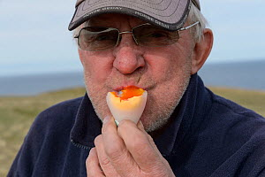 Man eating boiled Common murre / guillemot (Uria aalge) egg, portrait. Langanes Peninsula, Iceland. May 2018.  -  Terry  Whittaker