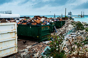 Skips and rubbish on coast of Harbour Island. Waste management can be a challenge on small islands and plastic blows into sea. Bahamas. 2017. - Shane Gross