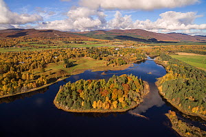 Loch Insh and the island of Tom Dubh in the Cairngorms National Park, Scotland, UK, October 2017  -  SCOTLAND: The Big Picture