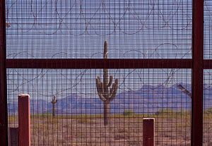Border wall with razor wire at the Mexican / United States border in Arizona, where the newer taller sections of the border wall pushed by President Trump are being erected in the environmentally sens...  -  Jack Dykinga