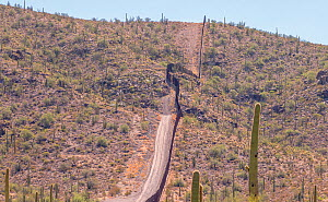 Landscape at the older Mexican / United States border wall in Arizona. Newer taller sections of the border wall pushed by President Trump are being erected in this environmentally sensitive Organ Pipe...  -  Jack Dykinga