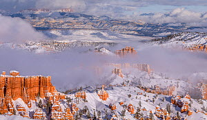 Landscape of hoodoos in snow at sunrise, Bryce Canyon National Park, Utah, USA, January. - Jack Dykinga