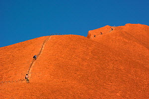 People climbing up Uluru / Ayers Rock, as of 2019 climbing up the rock is no longer permitted. Uluru-kata Tjuta National Park, Northern Territory, Australia. 2014. - Steven David Miller
