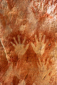 Handprint rock art created through spitting ochre over hands. In The Art Gallery, 62m of rock with 2000 stencils, engravings and paintings. Baloon Cave, Carnarvon Gorge, Carnarvon National Park, Queen... - Steven David Miller
