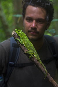 Man with Hump-nosed / lyreshead lizard (Lyriocephalus scutatus),Sinharaja Forest Reserve, Unesco Biosphere Reserve and World Heritage Site, Sri Lanka. Endemic. - Duncan Murrell