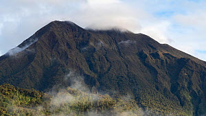 Timelapse of clouds passing over the summit of Sumaco Volcano, with rainforest in foreground, Orellana Province, Ecuador, 2018. - Morley Read