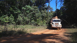 Logging truck carrying trees cut from a newly deforested area of the Amazon rainforest, Brazil, 2019. - Laurie Hedges