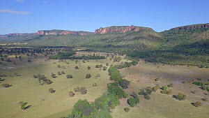Drone shot tracking over cerrado grassland and cattle ranch landscape, with tall mountains and cliffs, Matto Grosso, Brazil, 2019. - Laurie Hedges