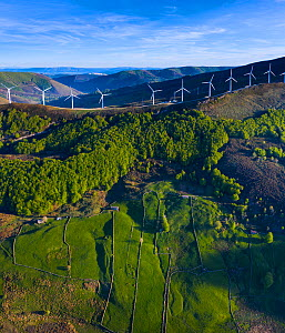 Wind turbines on ridge of hill, Beech (Fagus sp) forest and fields bordered by stone walls on hillside below. Aerial view in evening light. Portillo de la Sia, Soba Valley, Valles Pasiegos, Cantabria,...  -  Juan Carlos Munoz