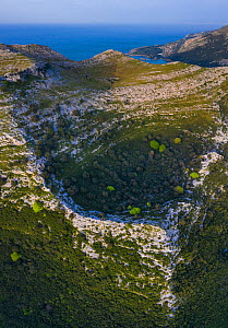 Dolina depression in limestone cliff, Mediterranean forest with Holm oak (Quercus ilex) forest on slopes. Cantabrian sea in background, aerial view. Liendo Valley, Montana Oriental Costera, Cantabria,...  -  Juan Carlos Munoz