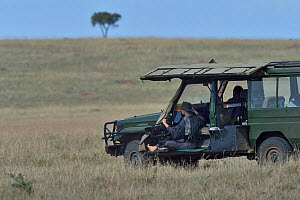 Camerawoman waiting in vehicle, looking out over the savanna, Masai Mara, Kenya. March.  -  Loic Poidevin