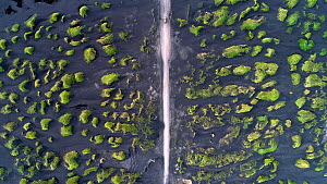 Aerial tracking shot of a car adriving along a road through a landscape of volcanic black sand, Stokksnes, Hoffell, Iceland, August 2018. - Milan Radisics