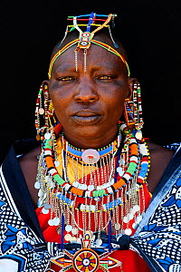 Maasai woman adorned with traditional bead work and colour glass perls around her neck, head portrait. Masai Mara National Reserve, Kenya. - Eric Baccega