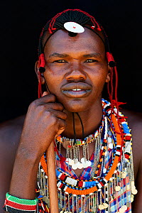 Maasai man adorned with traditional bead work and colour glass pearls around his neck, head portrait. Masai Mara National Reserve, Kenya. - Eric Baccega