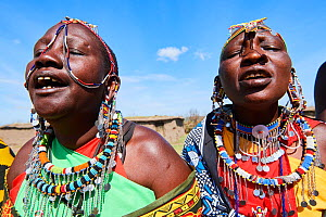 Maasai women singing and dancing in traditional dress and adorned with bead work, Masai Mara National Reserve, Kenya. - Eric Baccega