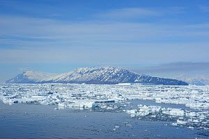 Cape Adare viewed across entrance to Ross Sea. Victoria Land, East Antarctica. January 2018.  -  Mike Potts