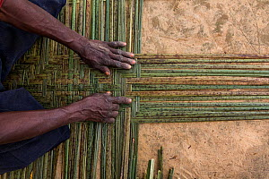 Local women weaving plants nto mats to later use or sell at markets. Democratic Republic of the Congo.  -  Karine Aigner
