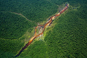 Aerial view �Bekalikali Bai,Salonga National Park.  Bais, or forest clearings, offer open space to congregate and access to water for elephants and other animals. Salonga National Park, Democratic Rep...  -  Karine Aigner