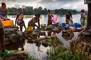 Local women washing clothes in river,  Oshwe, Democratic Republic of the Congo.  -  Karine Aigner