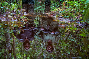 Portrait of female ecoguards / rangers reflected in water. Salonga National Park, Democratic Republic of Congo. May 2017. There are 16 women who work as Ecoguards in Salonga National Park  -  Karine Aigner
