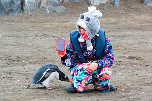 Chinese tourist from Antarctic expedition cruise ship taking selfie with Gentoo penguin (Pygoscelis papua) that has walked up to her. Antarctic Peninsula, Antarctica. February 2019. - Ashley Cooper