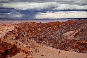 Heavy and unusual rainstorms on Cordillera de la Sal, Atacama desert, Los Flamencos National Reserve, Antofagasta Region, Chile, February  -  Oriol  Alamany