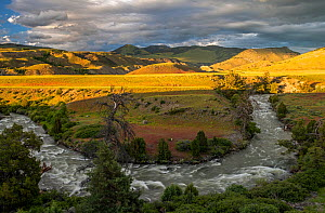 Meander of Gardiner River with grassland and hills in background, in evening light. Yellowstone National Park, Wyoming, USA. June 2018.  -  George  Sanker
