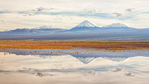 Licancabur volcano and surrounding mountains reflected in waters of a severe flood caused by climate change. Los Flamencos National Reserve, Antofagasta , Chile. February 2019. - Oriol  Alamany