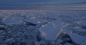 Sunset over pack ice, Antarctica, 2017.  -  Fred  Olivier