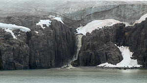 Waterfall of glacial meltwater at Alkefjellet Cliffs,with glacier above, Svalbard, Norway, 2016.  -  Fred  Olivier