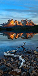 Shore of Lago Pehoe at sunrise, Central Massif and towers of Torres del Paine National Park reflected in lake. Patagonia, Chile. November 2018. - Nick Garbutt