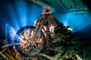 A backlit photo of a British World War II BSA M20 motorbike inside Hold 2 (port side, upper level) of the wreck of the Thistlegorm, with lionfish (Pterois volitans). Sha'ab Ali, Red Sea. Sinai, Eg...  -  Alex Mustard
