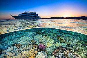 Split level photograph of a liveaboard dive boat (M.Y. Whirlwind), anchored near a coral reef, at sunet. Ras Katy, Sharm El Sheikh, Sinai, Egypt. Red Sea - Alex Mustard
