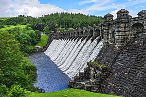 Dam of Lake Vyrnwy reservoir, water flowing down dam wall following heavy rainfall, surrounded by forest. Llanwddyn, Montgomeryshire, Powys, Wales, UK. June 2019. - Alan  Williams