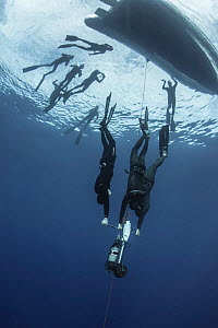 Three freedivers training with aid of sled, group of divers at surface near boat. Tenerife, Canary Islands. 2015.  -  Sergio Hanquet