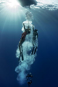 Group of freedivers training in Atlantic Ocean with aid of sled. Tenerife, Canary Islands. 2015.  -  Sergio Hanquet
