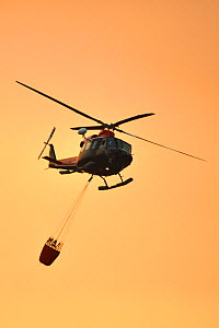 Helicopter fighting forest fire. Ifonche, Tenerife, Canary Islands, 2012.  -  Sergio Hanquet