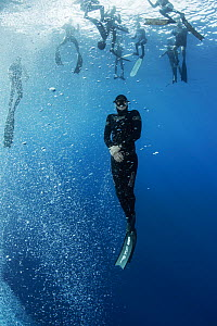 People learning to freedive in Atlantic Ocean. Tenerife, Canary Islands. 2015.  -  Sergio Hanquet