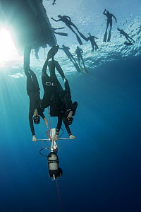 Divers learning to freedive with sled, more divers at surface. Tenerife, Canary Islands. 2015.  -  Sergio Hanquet