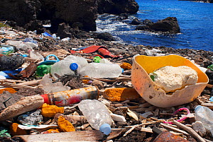 Plastic bottles and litter washed up on beach on south east coast of Tenerife - Sergio Hanquet