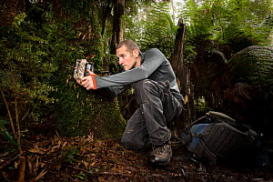 ?Researcher Jack Pascoe from the Conservation Ecology Centre setting up one of 140 camera traps which will be used to better understand how feral cat numbers and behaviour change upon the eradication... - Doug Gimesy
