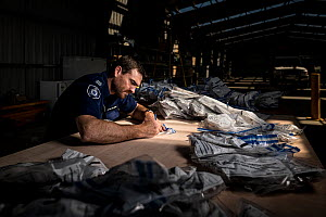 ?Glenn Lineham, a Victoria Wildlife Officer from the Department of Land, Water and Planning (DEWLP), sorts through and documents evidence bags from 406 poisoned Wedge-tailed eagles (Aquila audax) as p... - Doug Gimesy