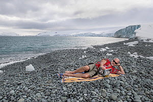 Tim Flannery in summer clothing, reading his best-selling book 'The Weather Makers' on an icy pebble beach, Robert Point, Antarctic Peninsula, Antarctica?, to illustrate the warming of the Ant...  -  Doug Gimesy