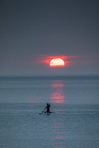 Man paddleboarding at sunset, returning from whale watching. Vrangel Bay, Primorsky Krai, Russia. August 2019.  -  Franco  Banfi