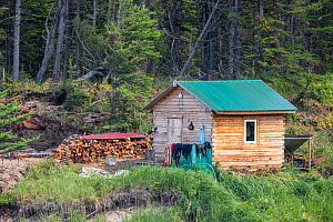 Sauna hut / banja and logpile at camp in Vrangel Bay where Bowhead whale (Balaena mysticetus) congregate every summer. Primorsky Krai, Russia. August 2019. - Franco  Banfi